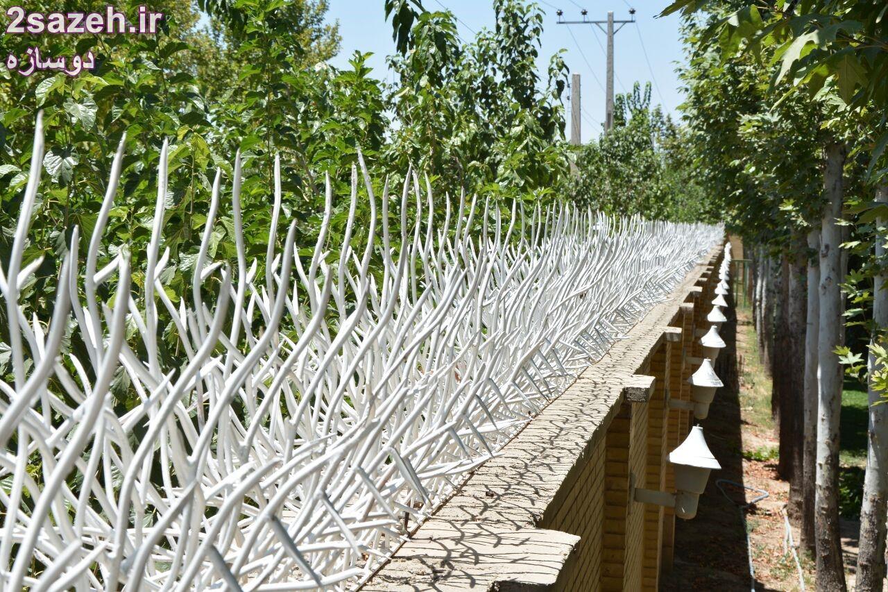 مشخصات کلی و قیمت حفاظ شاخ گوزنی